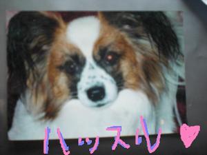 Hassuru