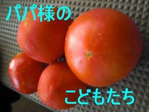 Cimg9261