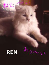 Renn1
