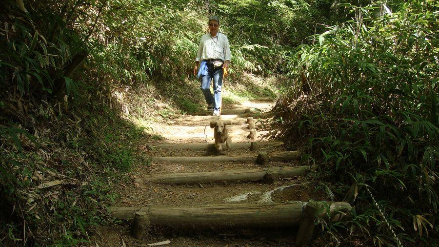 Fw: 遅くなりましたが金剛山登山の写真をを送ります